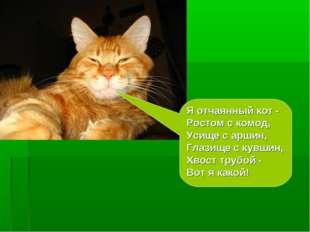 Я отчаянный кот - Ростом с комод, Усище с аршин, Глазище с кувшин, Хвост труб