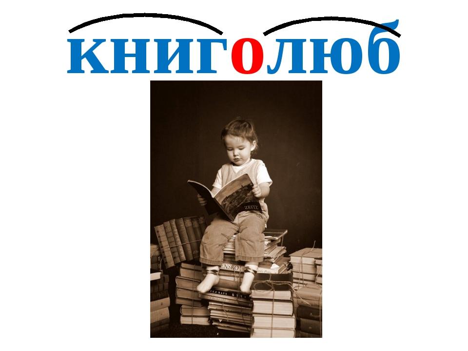 книголюб