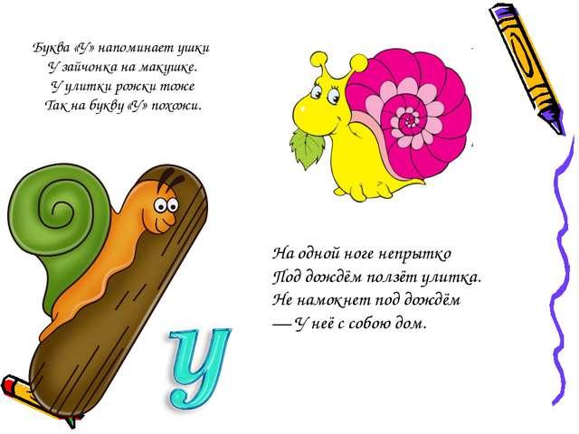 Буква «У» напоминает ушки У зайчонка на макушке. У улитки рожки тоже Так на б...