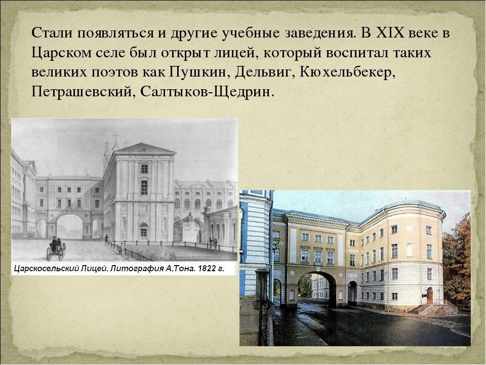 Стали появляться и другие учебные заведения. В XIX веке в Царском селе был от...