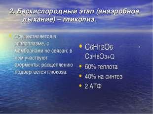 2. Бескислородный этап (анаэробное дыхание) – гликолиз. Осуществляется в гиал
