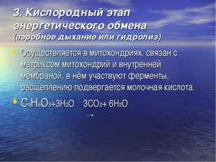 3. Кислородный этап энергетического обмена (аэробное дыхание или гидролиз) Ос