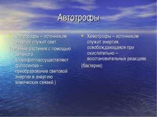 Автотрофы Фототрофы – источником энергии служит свет. (зеленые растения с пом