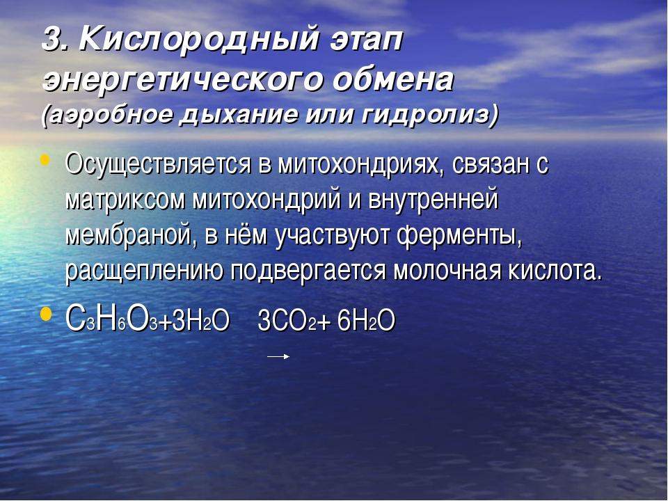3. Кислородный этап энергетического обмена (аэробное дыхание или гидролиз) Ос...