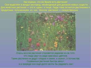 Как хорошо, что на Земле есть растения! Они выделяют в воздух кислород, необх