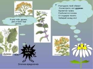 Много трав растёт полезных На земле страны родной. Могут справиться с болезнь