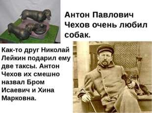 Как-то друг Николай Лейкин подарил ему две таксы. Антон Чехов их смешно назва