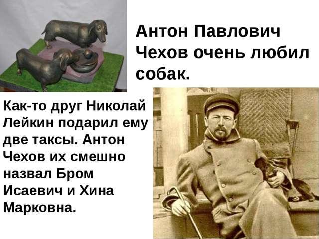 Как-то друг Николай Лейкин подарил ему две таксы. Антон Чехов их смешно назва...