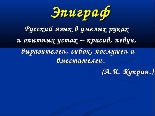 Эпиграф Русский язык в умелых руках и опытных устах – красив, певуч, выразите...