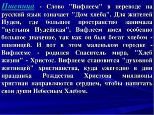 """Пшеница - Слово """"Вифлеем"""" в переводе на русский язык означает """"Дом хлеба"""". Дл"""