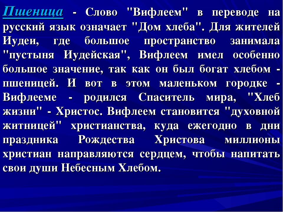 """Пшеница - Слово """"Вифлеем"""" в переводе на русский язык означает """"Дом хлеба"""". Дл..."""