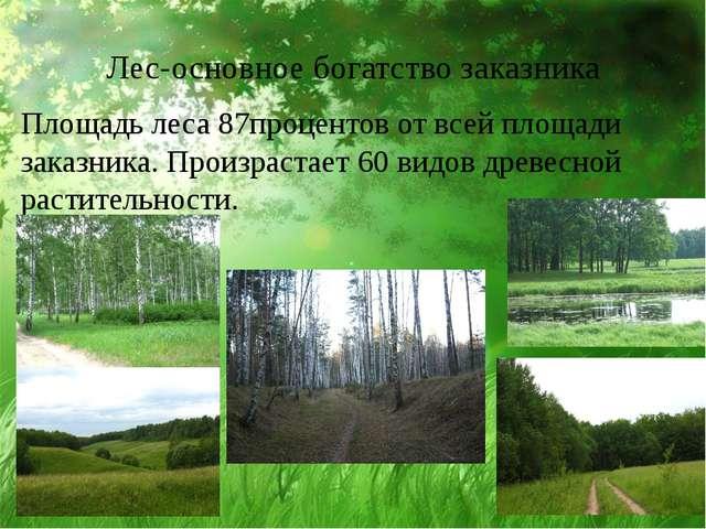 Лес-основное богатство заказника Площадь леса 87процентов от всей площади зак...