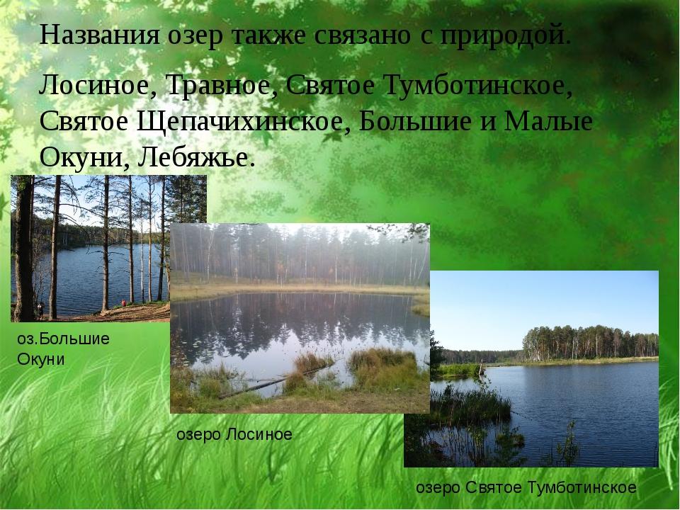 Названия озер также связано с природой. Лосиное, Травное, Святое Тумботинское...