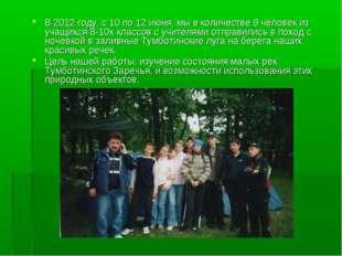 В 2012 году, с 10 по 12 июня, мы в количестве 9 человек из учащихся 8-10х кла