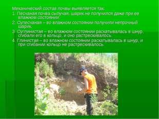 Механический состав почвы выявляется так: 1. Песчаная почва сыпучая, шарик не