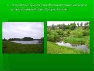 По территории Тумботинского Заречья протекают малые реки Кстово, Мельничный И