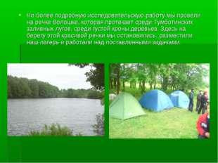 Но более подробную исследовательскую работу мы провели на речке Волошке, кото