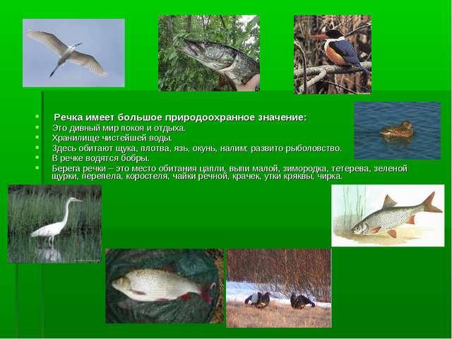 Речка имеет большое природоохранное значение: Это дивный мир покоя и отдыха....