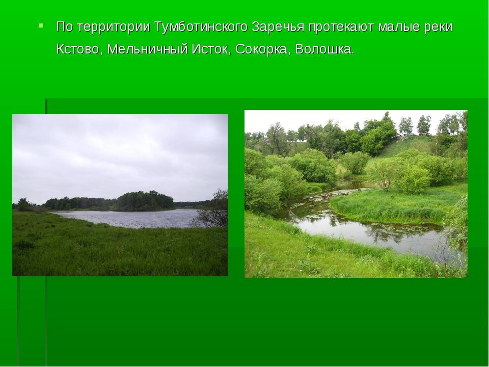 По территории Тумботинского Заречья протекают малые реки Кстово, Мельничный И...