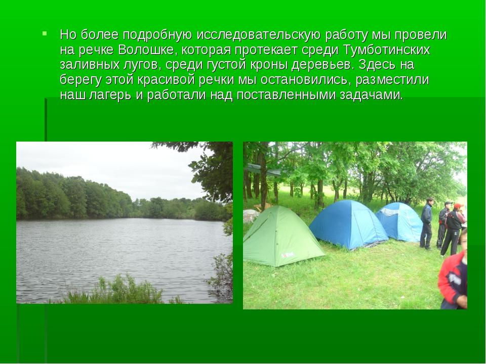 Но более подробную исследовательскую работу мы провели на речке Волошке, кото...