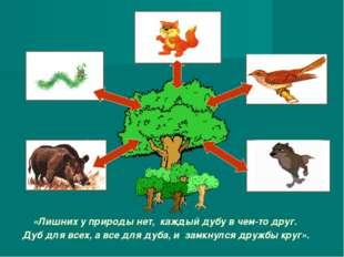 «Лишних у природы нет, каждый дубу в чем-то друг. Дуб для всех, а все для дуб