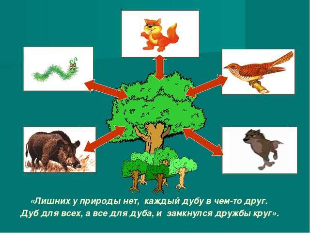 «Лишних у природы нет, каждый дубу в чем-то друг. Дуб для всех, а все для дуб...