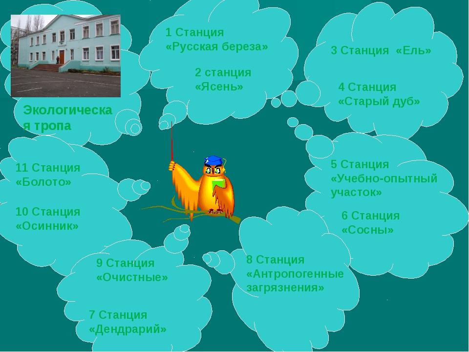 1 Станция «Русская береза» 2 станция «Ясень» 3 Станция «Ель» 4 Станция «Стары...