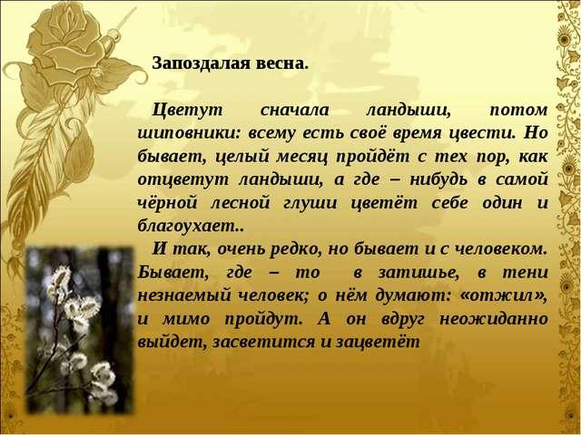 Запоздалая весна. Цветут сначала ландыши, потом шиповники: всему есть своё вр...