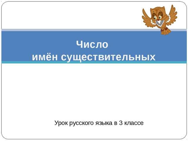 Урок русского языка в 3 классе Число имён существительных