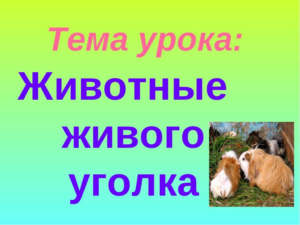 Тема урока: Животные живого уголка