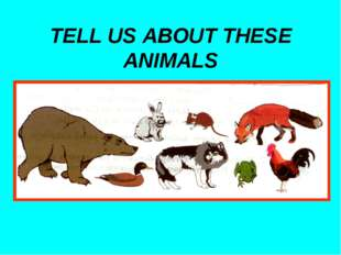 TELL US ABOUT THESE ANIMALS