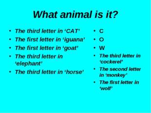 What animal is it? The third letter in 'CAT' The first letter in 'iguana' The