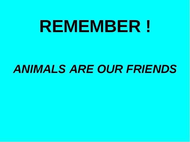 REMEMBER ! ANIMALS ARE OUR FRIENDS