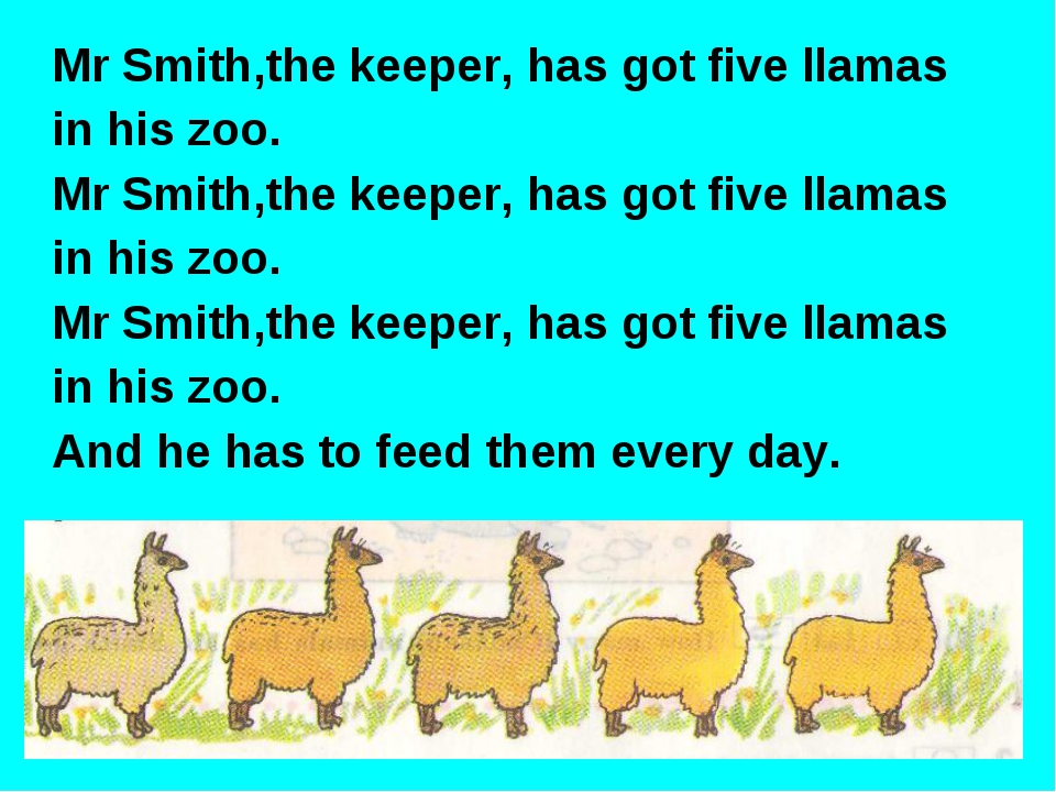 Mr Smith,the keeper, has got five llamas in his zoo. Mr Smith,the keeper, has...