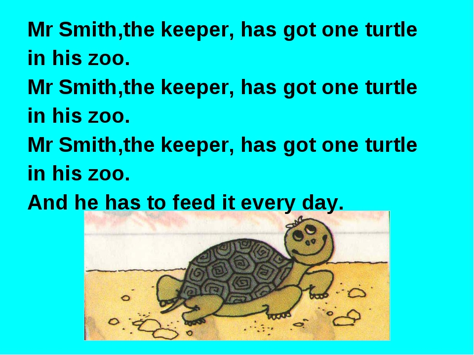 Mr Smith,the keeper, has got one turtle in his zoo. Mr Smith,the keeper, has...