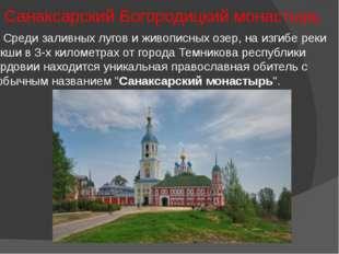 Санаксарский Богородицкий монастырь Среди заливных лугов и живописных озер, н