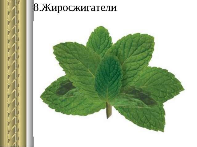 8.Жиросжигатели