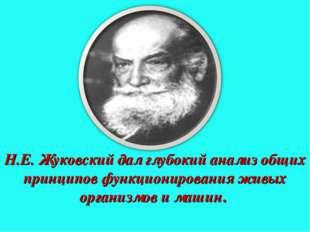 Н.Е. Жуковский дал глубокий анализ общих принципов функционирования живых орг