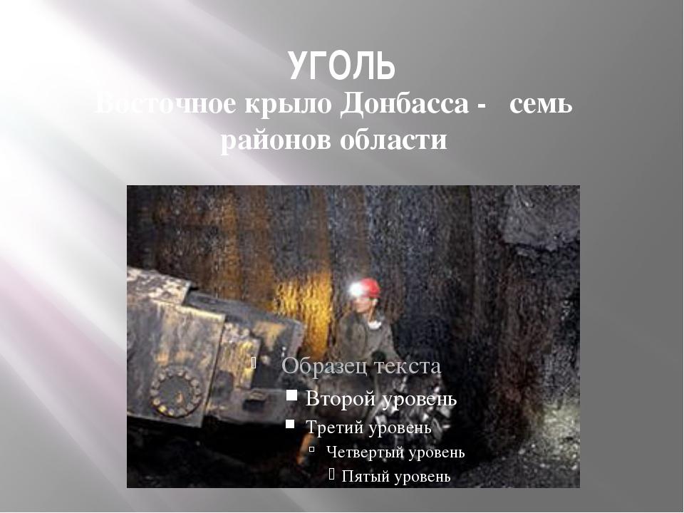 УГОЛЬ Восточное крыло Донбасса - семь районов области
