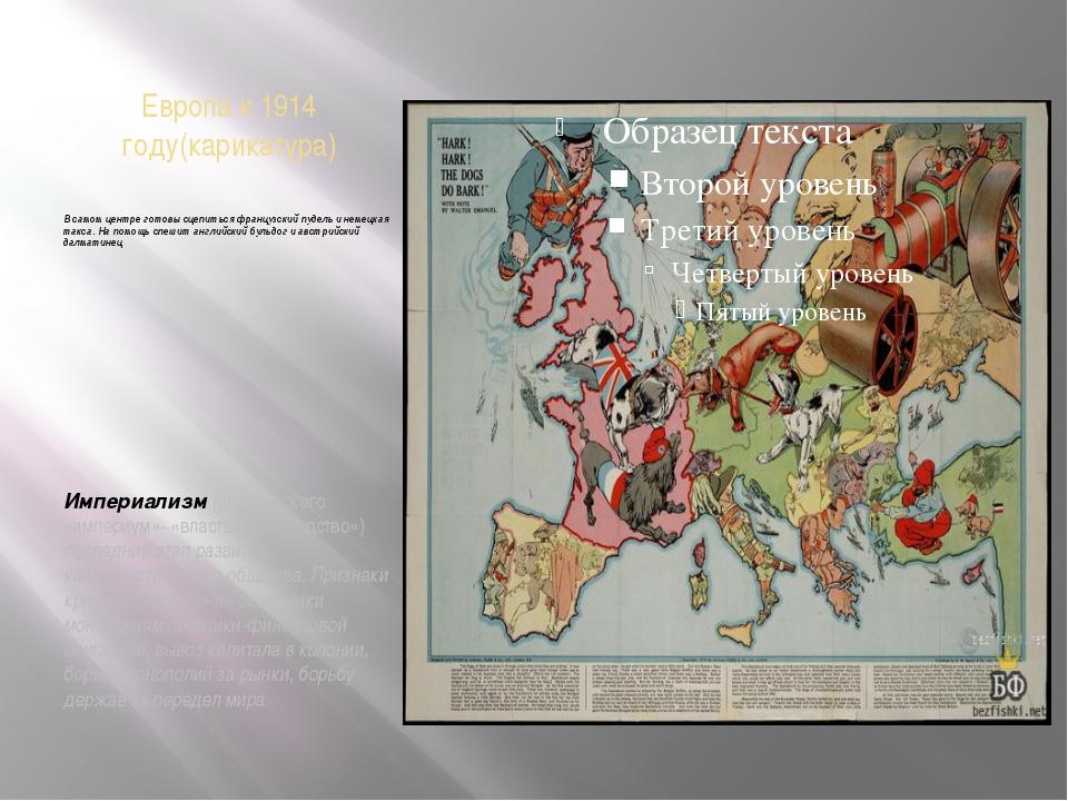 Европа к 1914 году(карикатура) В самом центре готовы сцепиться французский пу...