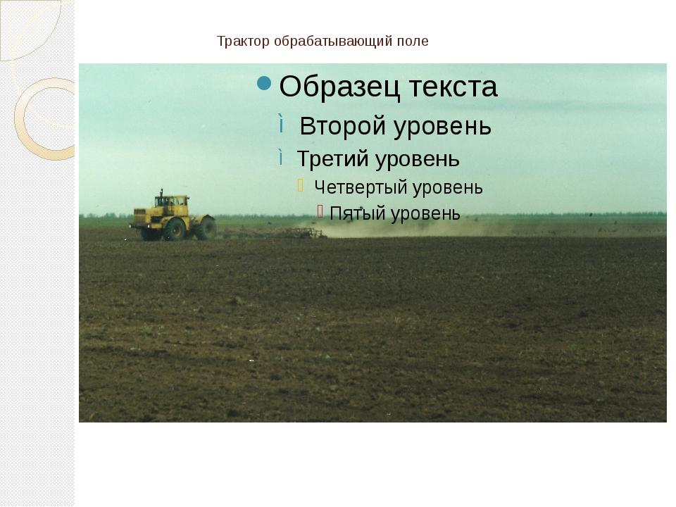 Трактор обрабатывающий поле