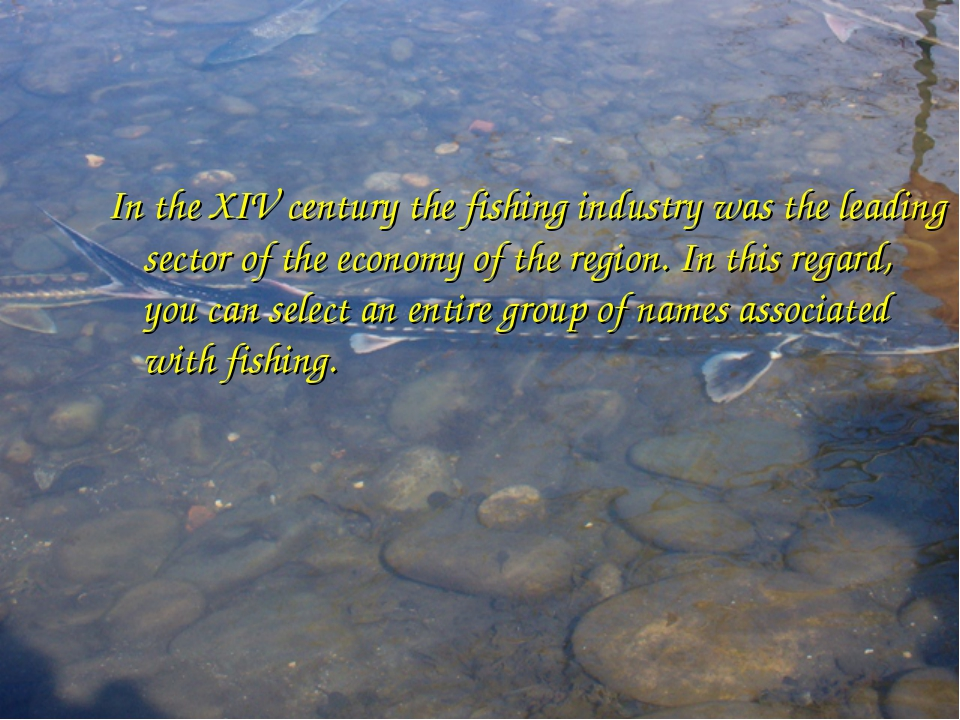 In the XIV century the fishing industry was the leading sector of the economy...
