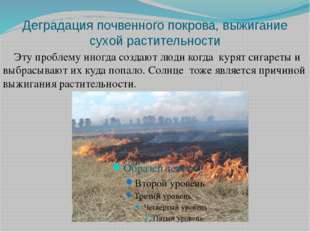 Деградация почвенного покрова, выжигание сухой растительности Эту проблему ин