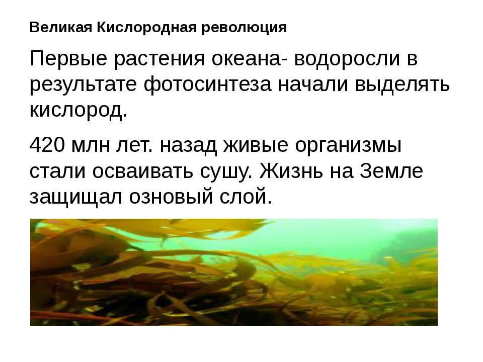 Великая Кислородная революция Первые растения океана- водоросли в результате...