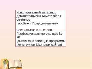 Презентация(программа power point) Cайт (ссылка) ОГОУ НПО Профессиональное уч
