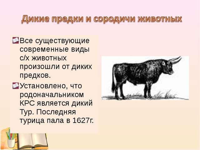Все существующие современные виды с/х животных произошли от диких предков. Ус...