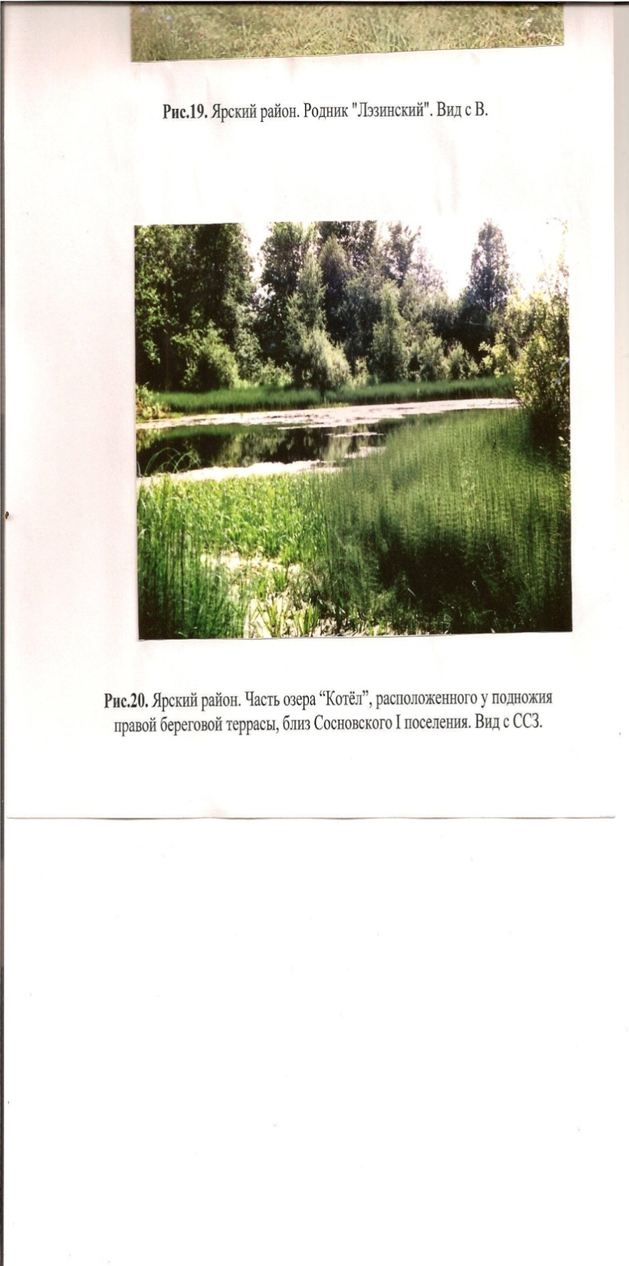 Photograph (22)