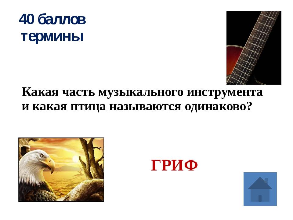 10 баллов музыкальный фольклор Объясните значение слова «фольклор» НАРОДНАЯ...