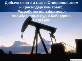 Добыча нефти и газа в Ставропольском и Краснодарском краях. Разработка вольфр
