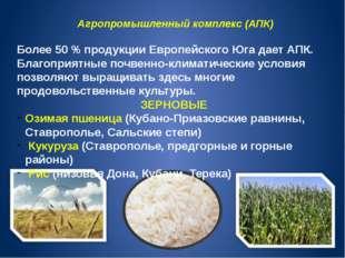 Агропромышленный комплекс (АПК) Более 50 % продукции Европейского Юга дает АП